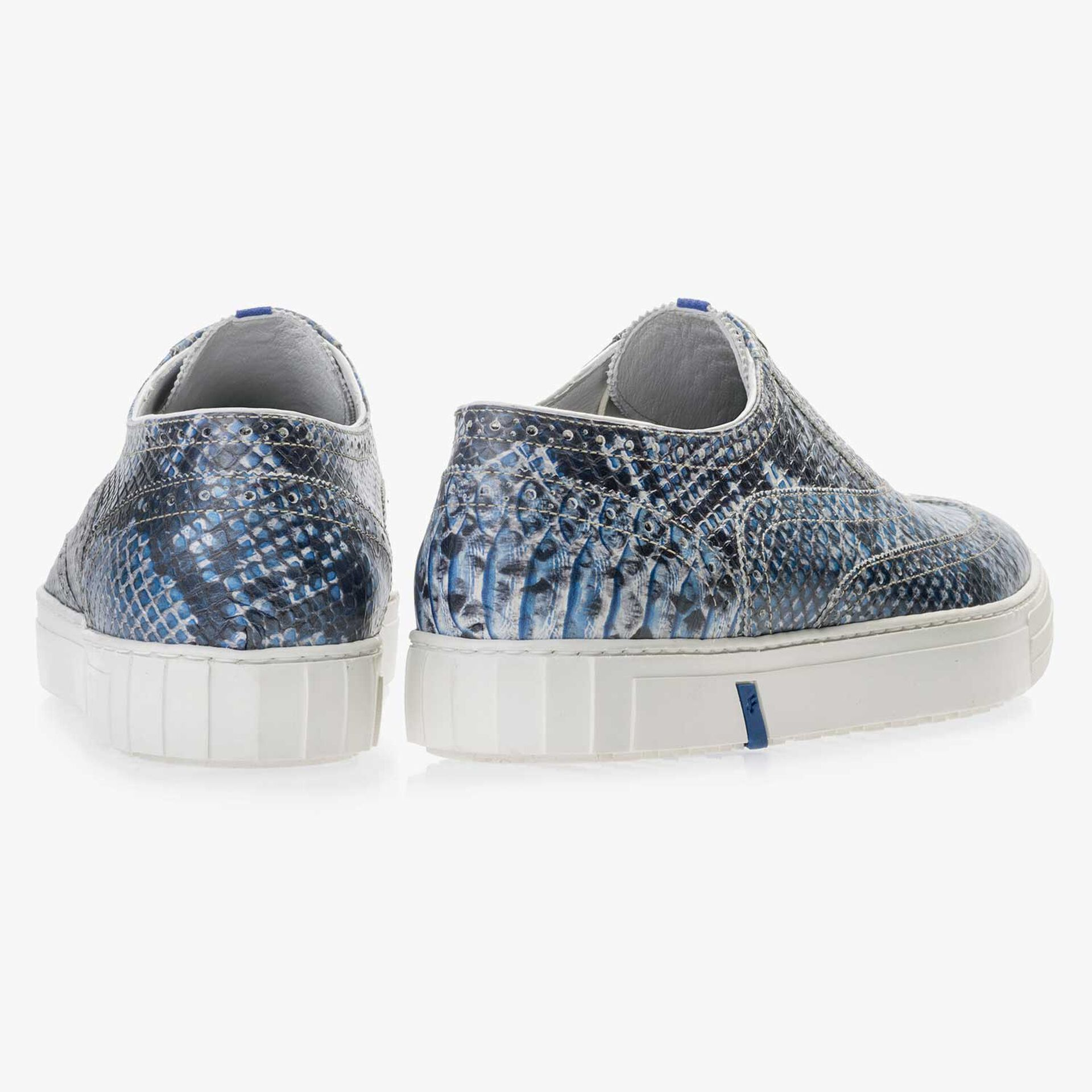 Blue brogue leather sneaker with a snake print